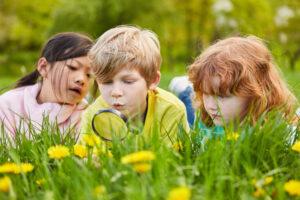 Filosoferen over natuur in de week van de kinderfilosofie